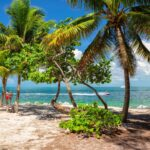 Things to Do in Key West, Florida