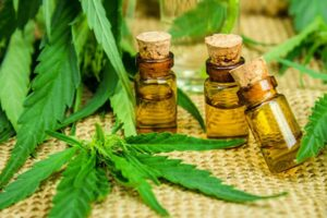 CBD Oil, What are the Benefits?